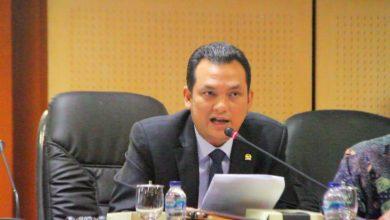 Photo of Martin Manurung: Pemimpin Negara Harus Jadi Pelopor New Normal