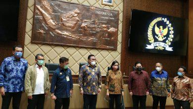 Photo of DPR Tegaskan Penanganan Pupuk Subsidi Harus Ditinjau Total